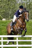 24/06/2011 HICKSTEAD ENGLAND, GEMMAIRE PRECIOUS II ridden by Nicole  Pavitt (GBR) competing in the H