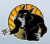 pic of wolfman  - were wolf editable  - JPG