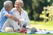Senior couple picnicking in the park smiling