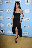 Persia White at the 6th Annual Essence Black Women in Hollywood Luncheon, Beverly Hills Hotel, Beverly Hills, C A 02-21-13