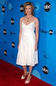 PASADENA, CA - JULY 19: Brenda Strong at the Disney ABC Television Group All Star Party on July 19, 2006 at Kidspace Children's Museum in Pasadena, CA.