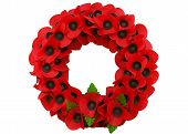 stock photo of tyne  - Poppy day great remembrance war world flanders