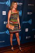 Ali Larter at the 24th Annual GLAAD Media Awards, JW Marriott, Los Angeles, CA 04-20-13