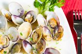 image of clam  - Delicious fresh clams cooking with a seafood - JPG