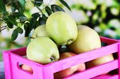 Juicy apples in box on wooden table on nature background