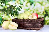 Juicy apples in basket on wooden table on nature background