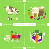 Flat Design Icons For Organic Food And Drink