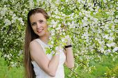 Portrait Of Beautiful  Woman With Apple Tree Flowers