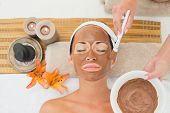 Peaceful brunette getting a mud treatment facial in the health spa