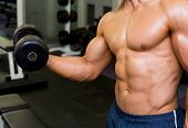 Mid section of shirtless young muscular man exercising with dumbbell in gym