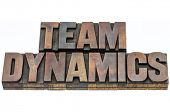 team dynamics - isolated text in vintage letterpress wood type blocks stained by ink