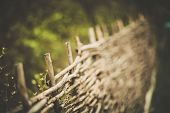 Wicker fence, the fence