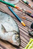 Caught Fish And Fishing Tackle