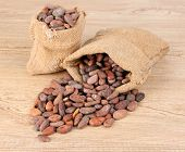 Cocoa beans in bags on wooden background
