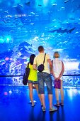 DUBAI, UAE - 1 APRIL 2014: People in front of the Oceanarium inside Dubai Mall. It is the largest in