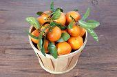 Clementine Mandarin Fruit