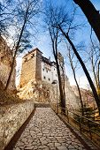 Close view of Bran Castle with stoned path