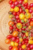 foto of picking tray  - Assorted colorful tomatoes and herbs from the garden.