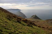 The Cliffs Of Exmoor