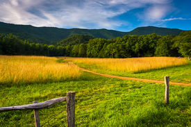 picture of cade  - Fence and field at Cade - JPG