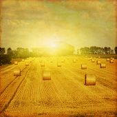 Agricultural field with hay bales at sunset. Grunge and retro style.