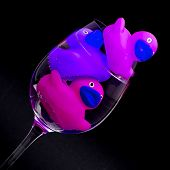 Pink And Purple Rubber Ducks In Wineglasses