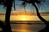 Bent Tree Sunrise
