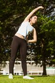 Healthy and beautiful young woman doing stretching exercises in park