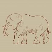 Vector illustration of an elephant.