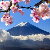 The Sacred Mountain Of Fuji In The Background Of Blue Sky At Japan