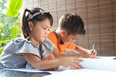 Cute ?little pan asian girl reading a story book sitting next to an older brother engrossed in coloring activity in home environment