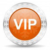 vip orange icon, christmas button