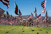 stock photo of windy weather  - Many American flags in windy weather with mountains behind - JPG
