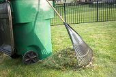 image of manicured lawn  - Raking up grass cuttings in spring during yard maintenance with a heap of clippings and a tined rake standing on a neatly manicured lawn alongside a plastic wheelie bin for composting - JPG