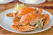 image of cooked crab  - Stream Crabs on white dish and source - JPG