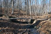 stock photo of illinois  - A small footbridge over a stream in the Hammel Woods Forest Preserve in Shorewood - JPG