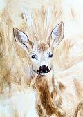 image of deer head  - deer head sepia painting sketch on canvas - JPG