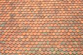 pic of roof tile  - Old clay roof tiles with moss background - JPG