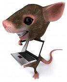 foto of gerbil  - Fun mouse - JPG