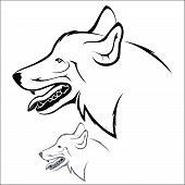 stock photo of white wolf  - Vector illustration  - JPG