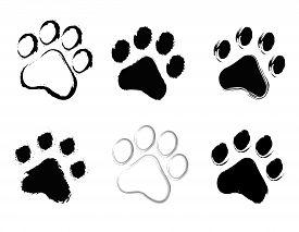 image of dog tracks  - Grunge pet  - JPG