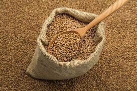 stock photo of buckwheat  - Full linen sack with buckwheat on background of scattered buckwheat with wooden spoon - JPG