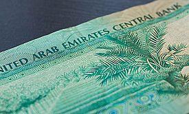 pic of dirham  - Ten dirhams of the United Arab Emirates close up - JPG