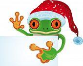 Vector  Frog as Santa (See raster version  Also In My Portfolio)
