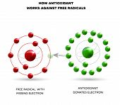How Antioxidant Works poster
