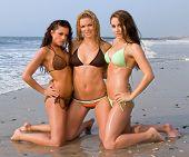 Three Lovely Young Women In A Bikini