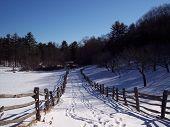 Farm Lane In Winter