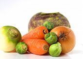 Fresh Vegetable Selection