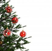 Xmas tree with red balls isolated on a white background