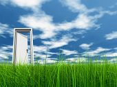 picture of clouds sky  - High resolution 3D white door opened in grass to a nice sky background with white clouds - JPG